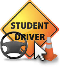 Image result for driver ed course