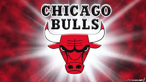 Image result for chicago bulls