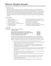 examples of resumes how to write a professional summary for examples of resumes resume examples resume job summary examples basic resume examples in example of