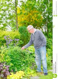 Image result for images of a old man in garden