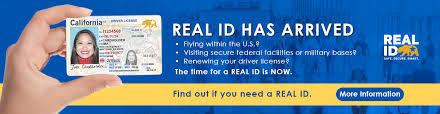 DMV Homepage