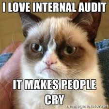 Internal Audit on Pinterest   Accounting Humor, Math Wall and Mousepad