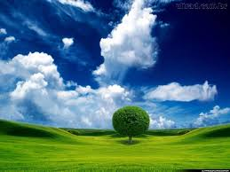 Paraíso se conquista dia após dia, com os pés no chão e mente elevada.