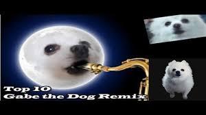 TOP 10 GABE THE <b>DOG</b> REMIX <b>Топ</b> 10 Гейб <b>собак</b> Ремикс #Ripgabe