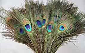 Buy Desi <b>Natural Peacock</b> Eye Feathers Tails, Pack of 25 Online at ...