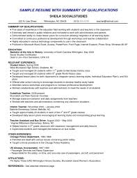 example of a resume summary template example of a resume summary