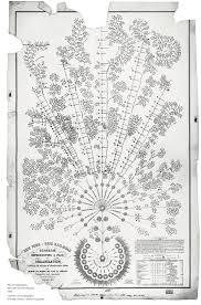 organization chart   charts   google developersexample