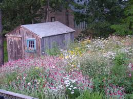 Small Picture Garden Design Garden Design with Wildflower Garden Connecticut