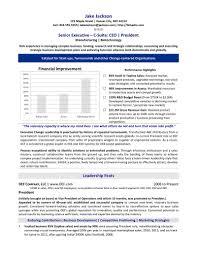 professional resume samples pdf best ideas about professional professional resume samples pdf resume ceo sample ceo resume sample template