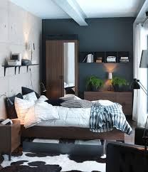 bedroom furniture ikea decoration home ideas:  ikea bedroom masculine design bed with storage
