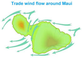 Image result for winds