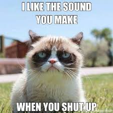 Frowns that will make you smile | Grumpy Cat, Grumpy Cat Meme and ... via Relatably.com
