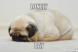 Lonely Pug Meme Generator - DIY LOL via Relatably.com