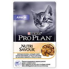 Влажный корм для котят Purina <b>Pro Plan</b> Junior, курица, <b>пауч</b>, 85 г