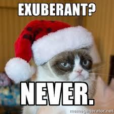 Exuberant? never. - Grumpy Cat Santa Hat | Meme Generator via Relatably.com