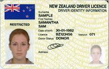 Image result for 6L license