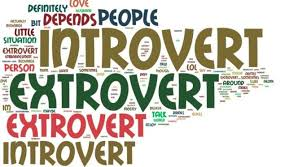 Image result for ekstrovert dan introvert