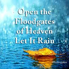 Image result for i hear the sound of the abundance of rain PICS