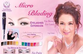<b>Microblading</b> Eyebrows, <b>Permanent Makeup</b> Supplies & Training ...