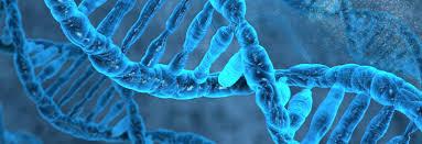biochemistry molecular and cellular university of oxford biochemistry