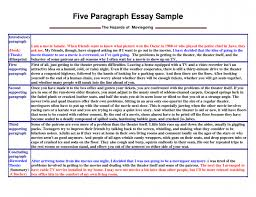 Persuasive Essay Conclusion Format All About Essay Example
