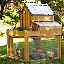 Favorites  Backyard Chicken Coops for Small Flocks  Gardenistacedar coop   planter