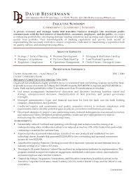 sample resume executive summary template sample resume executive