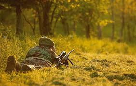 The CIC UK 2014 stalking review of fallow, CWC, muntjac, <b>sika</b> and ...