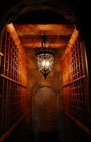 wine cellar lighting wine cellar traditional with none cellar lighting