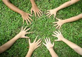 Image result for green activism
