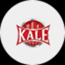 <b>Цилиндр</b> для замка <b>Kale</b>