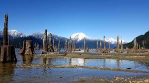 Stave Lake