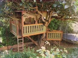 Best Treehouse Plans and Designs   Coolest Tree Houses Ever Treehouse Mahal