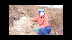 <b>Органическое удобрение</b> для сада. <b>Конский</b> навоз - YouTube