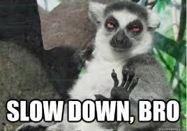 slow down, bro - Too High Lemur - quickmeme via Relatably.com