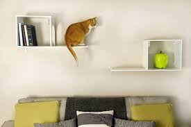help your cat reach a new level stylish climbing shelves chic cat furniture