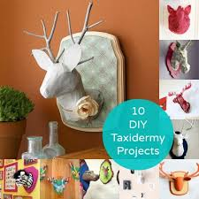 6 DIY Animal <b>Heads</b> to Make | Animal <b>heads</b>, <b>Crafts</b>, Papier mache