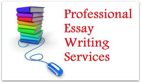 Best Resume Writing Services Chicago  Best Resume Chicago   Essay