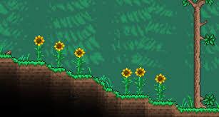 <b>Sunflower</b> - The Official Terraria Wiki