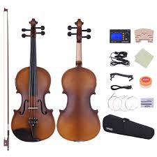 ammoon <b>Full Size 4/4 Violin</b> Acoustic Electric Violin Fiddle Solid ...