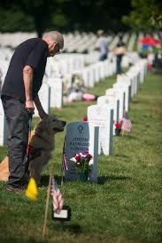 u s department of defense photo essay cal copp left and lily the grave o army master sgt joseph