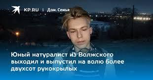 Юный натуралист из Волжского выходил и выпустил на волю ...