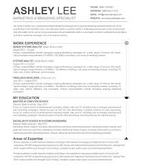 resume template bsc cv job format templates  resume template resume template resume template for mac resume template 89 appealing