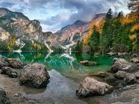 46 лучших изображений доски «Foresta fresca» | Зеленая ...