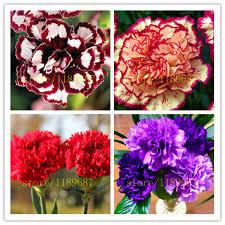 100 <b>pcs</b> Blue <b>Dahlia</b> flower Beautiful Gardens <b>Dahlia</b> pinnata Bonsai ...