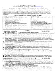 sample core competencies it business analyst manager resume wit business intelligence manager resume the most excellent business business intelligence manager resume template business management resume