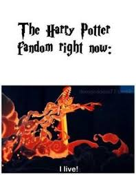 Fantastic Beasts and Where to Find Them on Pinterest | Magical ... via Relatably.com