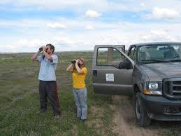 research experiences for undergraduates reu in raptor research looking through binoculars