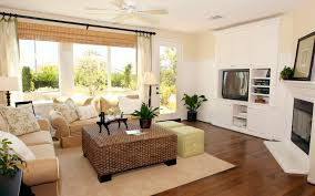 interior agreeable remodelling house design living room brown sofa and rattan coffee table plus carpet soft bedroomagreeable green brown living rooms