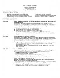 business business development manager sample resume business development manager sample resume